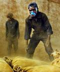 Công nhân vận chuyển bột quinine, nguyên liệu chính để sản xuất thuốc chống sốt rét tại một nhà máy.