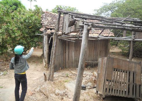 Một chòi rẫy của người dân ở trong rừng bị voi quật đổ. Ảnh: Minh Thảo