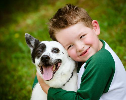 Vì sao nên cho bé nuôi thú cưng - VnExpress Đời sống