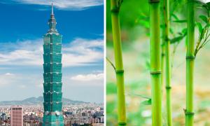 Những tòa nhà nổi tiếng lấy cảm hứng từ cây cỏ