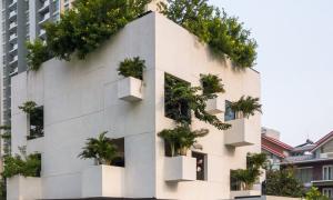Nhà Sài Gòn trổ 10 mảnh vườn lơ lửng
