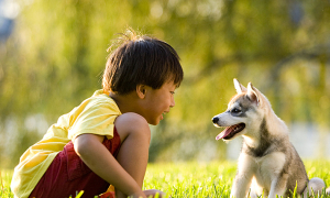 Nuôi chó giúp trẻ ngoan ngoãn hơn