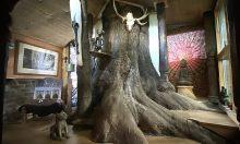 Nhà ba 'tầng' trên cây