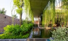 Ngôi nhà gạch có lớp rèm cây xanh